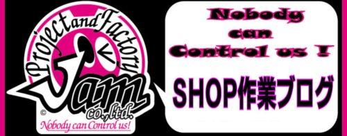 shopbloglogo1