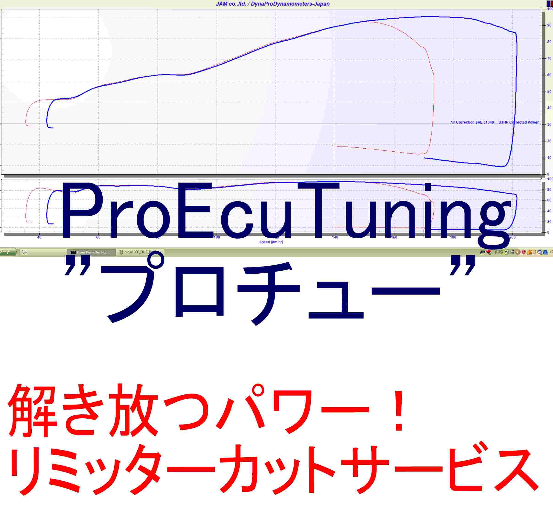 proecutuninglogo1