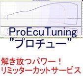 proecutuninglogo1-1600x1467